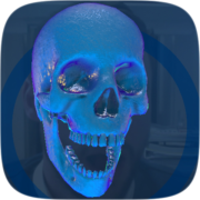 Skull v1 Instagram AR filter icon