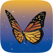 Mariposas Instagram AR filter icon