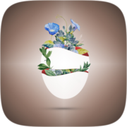Flowerful Instagram AR filter icon