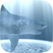 Endangered Sharks Instagram AR filter icon